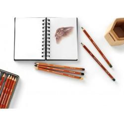 Derwent 1610/disegno a matita/ /Light Sienna